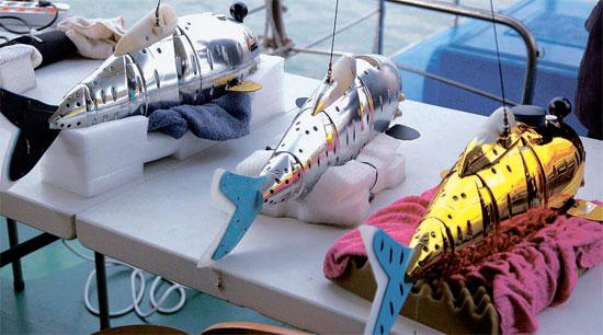 監査院の監査結果、多くの問題が判明した水質調査用ロボット魚。李明博政権の国策事業である4大河川建設と関連し、ロボット魚は当初、1秒あたり2.5メートル泳ぎ、水温・酸性度・電気伝導度・溶存酸素量・濁度などをモニタリングし、水質汚染を随時監視するよう設計された。しかし監査院のテスト結果、実際には秒速23センチにすぎなかった。また、濁度測定センサーが抜け、位置認識もほとんど故障していた。(写真=監査院・中央フォト)