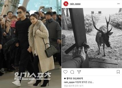 Rainとキム・テヒ(左)と2人が泊まっていたリゾートロッジにやってきた鹿(写真=韓国日刊スポーツ、Rainのインスタグラム)