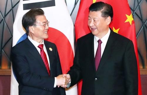 文在寅大統領が11日(現地時間)、ベトナム・ダナンで中国の習近平国家主席と会談前に握手している。会談は習主席が移動する時間がないという中国側の要請で習主席の宿舎で行われた。