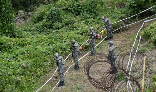 韓国陸軍が南北軍事分野合意書により非武装地帯内の韓国戦争戦死者遺骸発掘のための地雷除去作業を2日、江原道鉄原郡(カンウォンド・チョルウォングン)第5師団(ヨルセ部隊)の近くから始まった。将兵が地雷探知および除去作業を行っている。(写真=共同取材団)