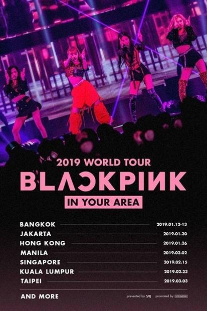blackpink 来年デビュー初ワールドツアーへ Joongang Ilbo