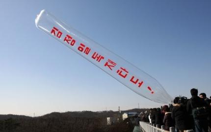 自由北朝鮮運動連合と拉北者家族会の会員らが金正日北朝鮮国防委員長誕生日だった2009年2月16日に臨津閣の「自由の橋」で北朝鮮のお金とともに北朝鮮ビラを飛び立たせた。パク・ジョングン記者