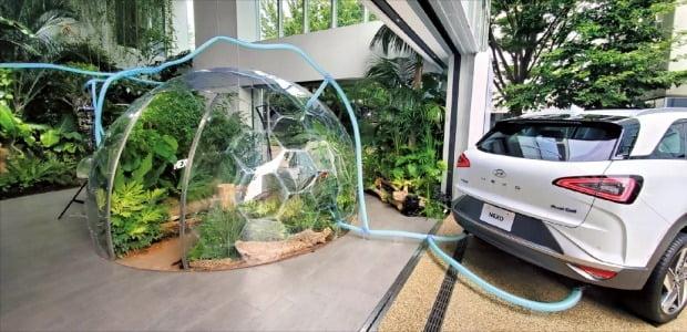 16日、東京渋谷区代官山の複合文化空間「TSUTAYA T-SITE」外部展示場に現代自動車の燃料電池車「NEXO」が展示されている。NEXOが排出する水とエネルギーを室内庭園に連結してエコカーのイメージを表している。 チョン・ヨンヒョ特派員